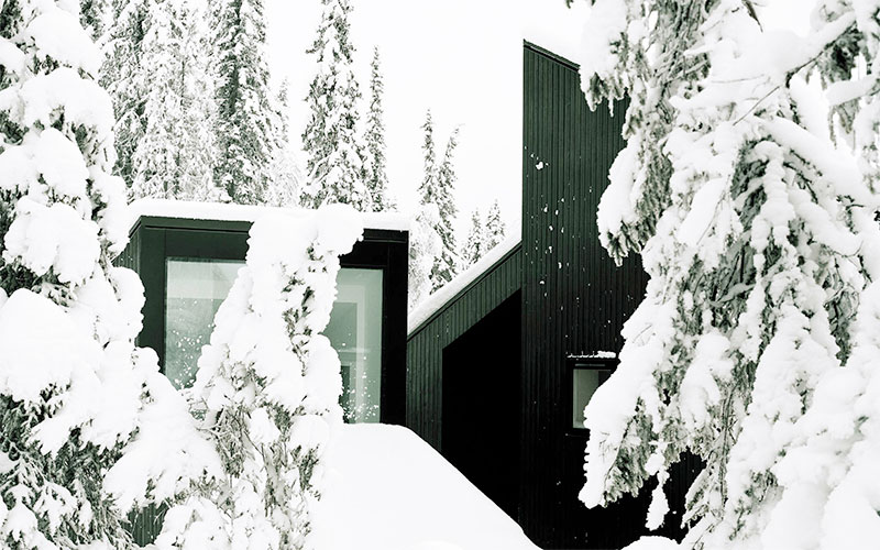 Κάτι παραπάνω από μία απλή χειμερινή κατοικία Skog